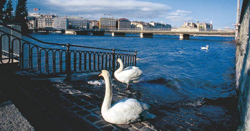 Genève - Foto Swiss Community.org